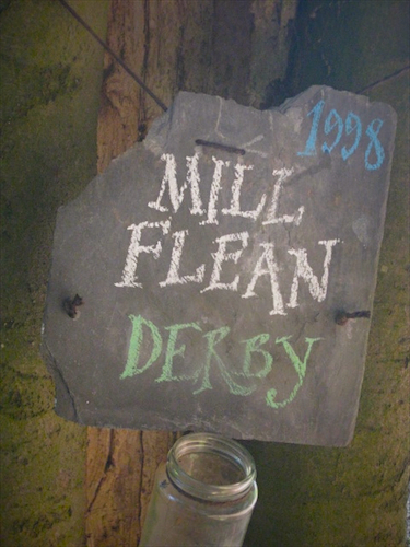 Mill_flean